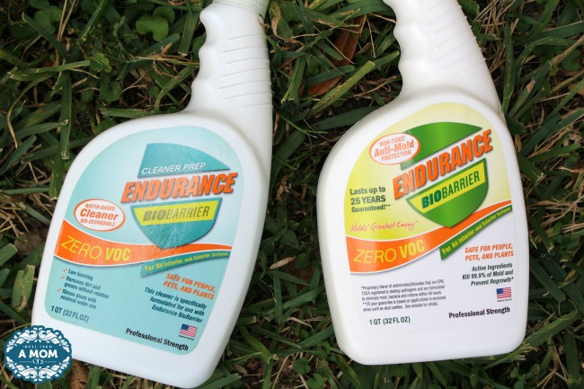 Endurance BioBarrier Non Toxic Mold Spray Review