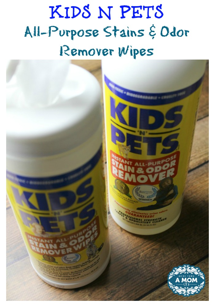 KIDS N PETS All-Purpose Stains & Odor Remover Wipes Review