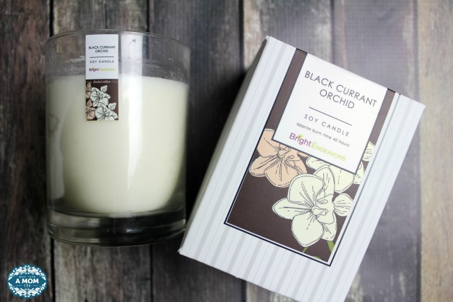Spruce Up Your Home with Bright Endeavors Candles